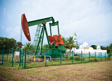 Oil Discovery Tour